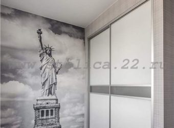 Шкаф-купе встроенного типа «СВОБОДА»2 двери